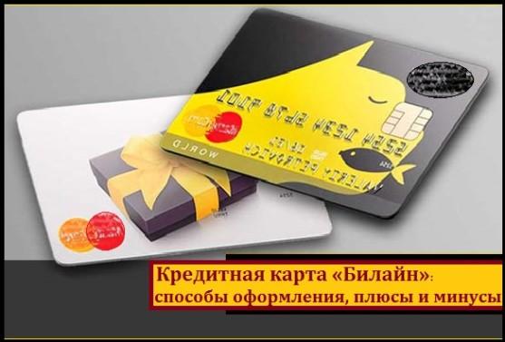 Кредитная карта билайн: как получить и условия оформления в 2019 году